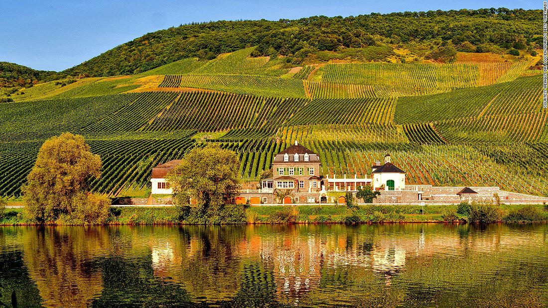 The world's best vineyards for 2019 revealed