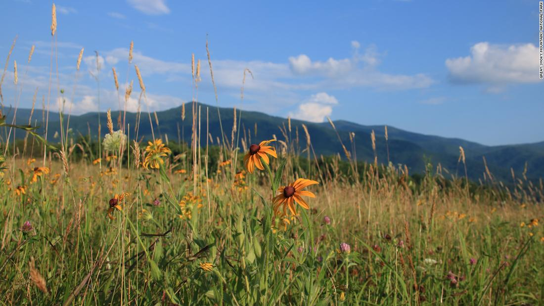 Things to do in Great Smoky Mountains National Park