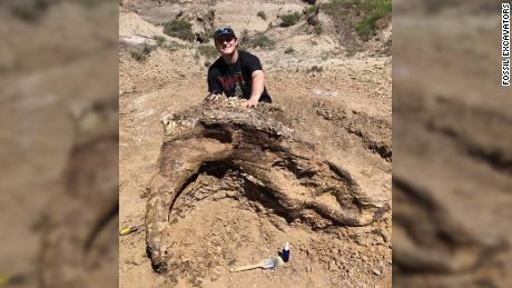 Student unearths 65 million-year-old Triceratops skull