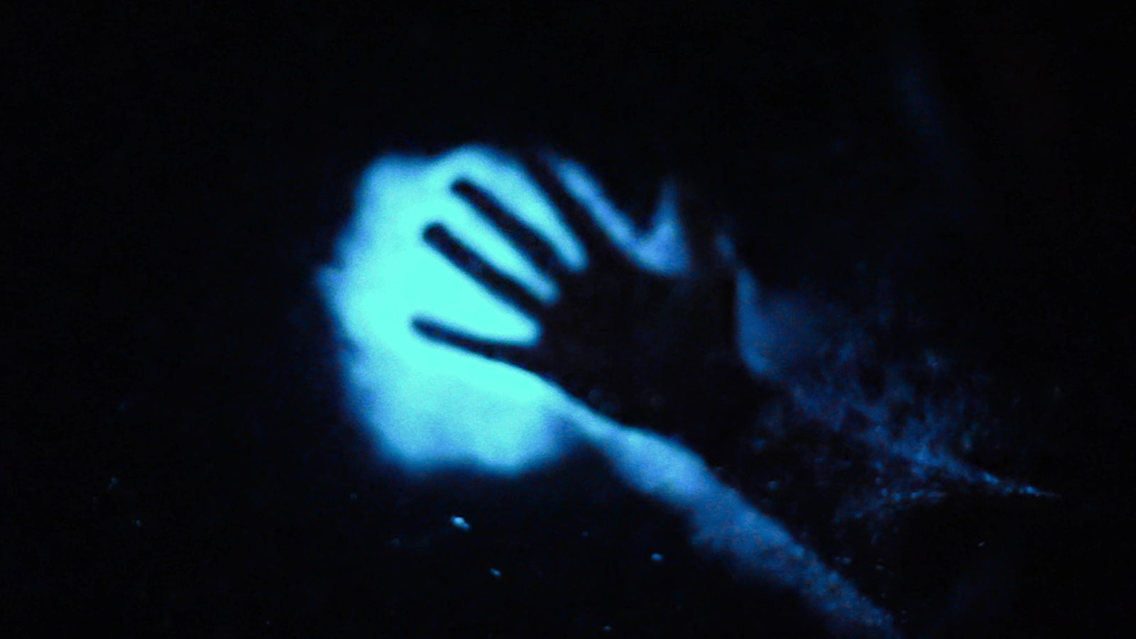 Vieques Bioluminescent Wonder Paddling In Trippy Mosquito