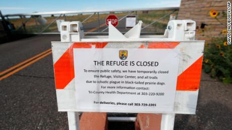 No camping at Phish shows near Denver because of plague concerns
