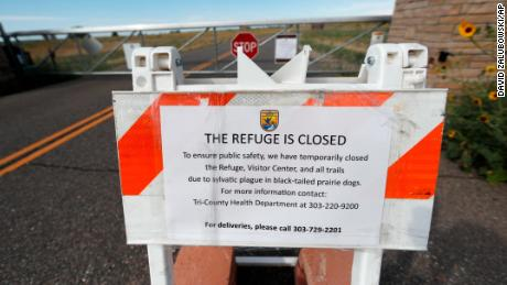 No camping at Phish shows near Denver over plague concerns