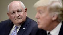 Agriculture Secretary Sonny Perdue calls coronavirus a 'pandemic'