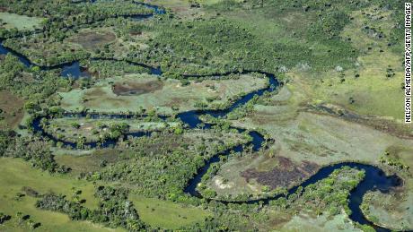 Aerial view taken showing a native Cerrado savanna in Formosa do Rio Preto, western Bahia state.