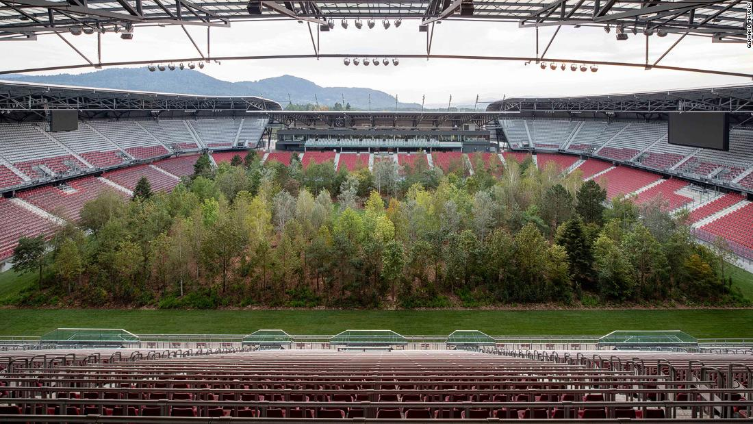 Forest grows in the middle of a football stadium