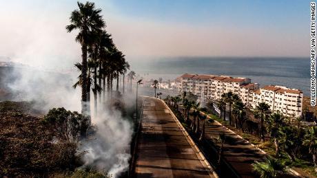 Vista aérea de palmeras y ardor en Real Del Mar, en las afueras de Tijuana
