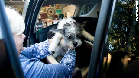 Sandy Beddow evacuated with her dog Saturday as the Kincade Fire burned nearby.