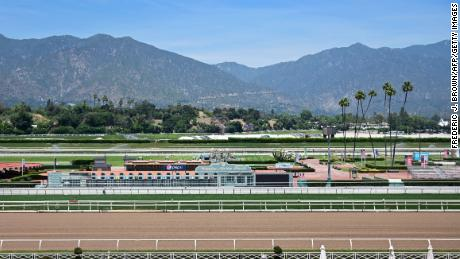 Injury mares Vino Rosso's Breeders Cup win at Santa Anita