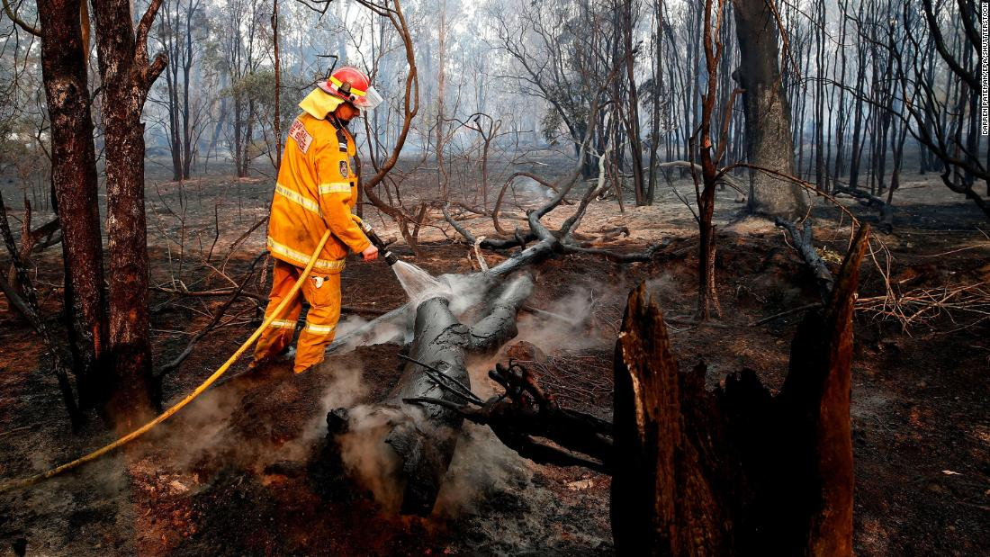 A firefighter works to contain a bushfire near Taree on November 10.