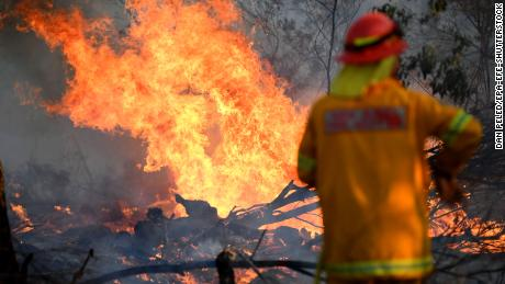 A firefighter works to contain a bushfire near the town of Glen Innes in the state of New South Wales on Sunday.