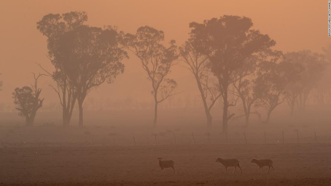 Smoke from the Gulf Road Fire fills the air in Glen Innes on November 11.