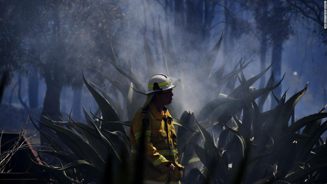A firefighter mops up after a bushfire in the Sydney suburb of Llandilo on November 12.