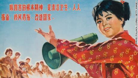 Chinese Cultural revolution poster about the so-called four pests: mosquitoes, rats, flies and sparrows.