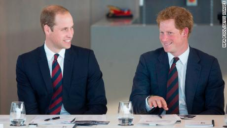 William and Harry in 2014.