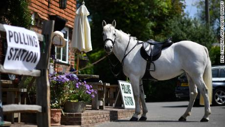 A horse tethered outside a polling station during this year's European elections.