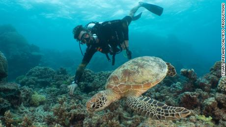 David de Rothschild gets up close to a turtle on the Great Barrier Reef, June 2019.