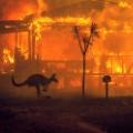 10 australia fires 1231 RESTRICTED