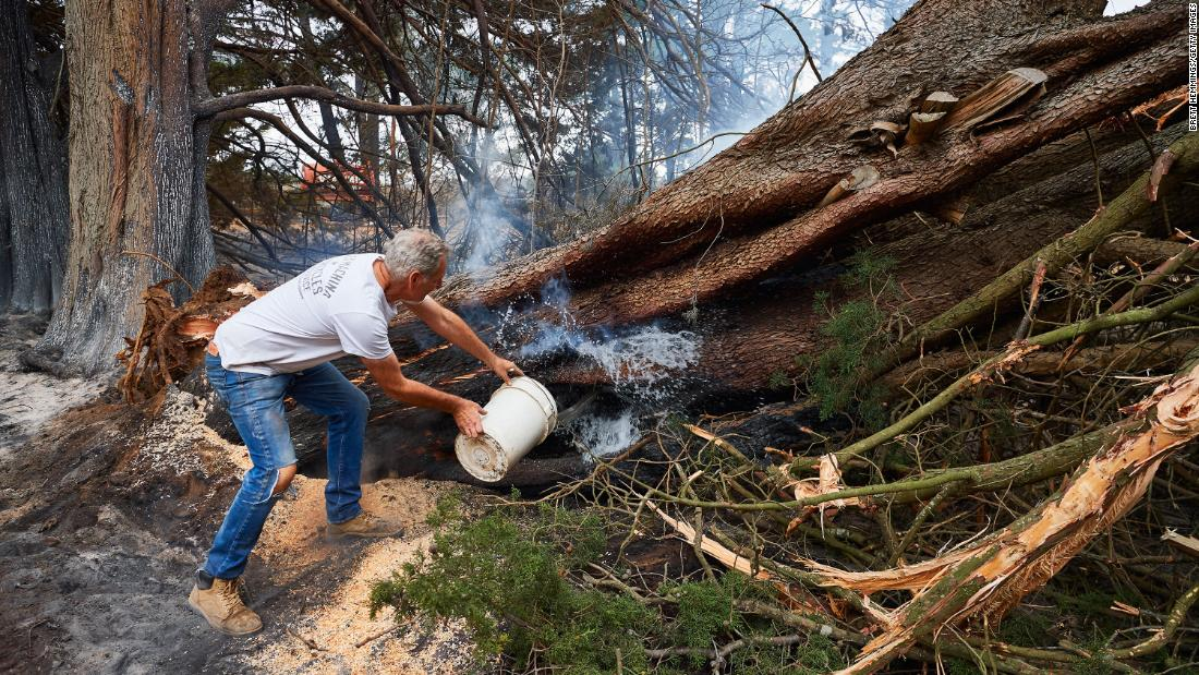 A resident throws a bucket of water onto a smoldering tree on his property on Monday, 一月 6, in Wingello, 澳大利亚.