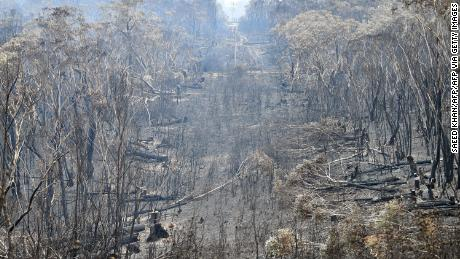A view of the landscape after a bushfire on Mount Weison, 74 miles (120 km) northwest of Sydney.