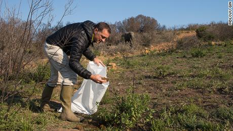 Les Ansley collects elephant dung in Botlierskop, a game reserve in South Africa.