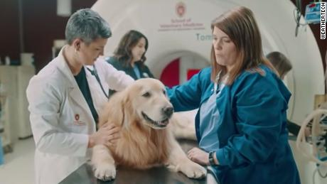 CEO thanks vets who saved his dog with $6m Super Bowl ad