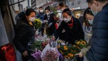 Will Sinophobia be our downfall in the fight against coronavirus?