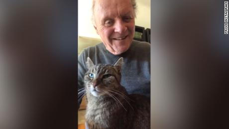 Anthony Hopkins is whiling away the hours by playing the piano to his cat