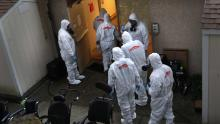 US missed early chance to slow coronavirus, genetic study indicates