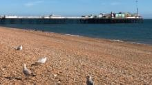 Brighton Beach was largely deserted on Saturday following instructions from local officials to tourists to stay away from the southern English resort.