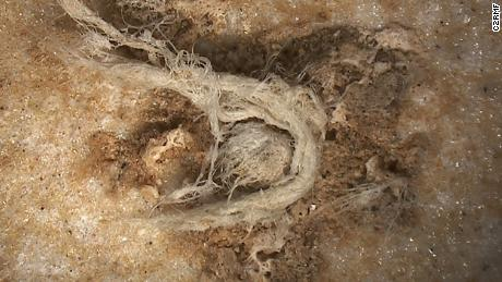 세계's oldest string of yarn shows Neanderthals were smarter than we thought