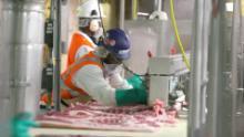 گوشت پروسیسنگ پلانٹس کوویڈ ۔19 ہاٹ بیڈ کیوں بن گئے ہیں؟