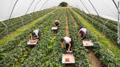 Coronavirus may force the UK to rethink its relationship with migrant workers
