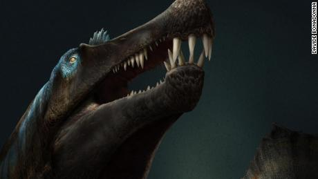 A war, bones dealer and a desert expedition: The story behind learning Spinosaurus could swim