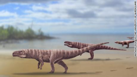 Footprints of Ancient 10-foot Crocodile That Walked on Two Legs Discovered