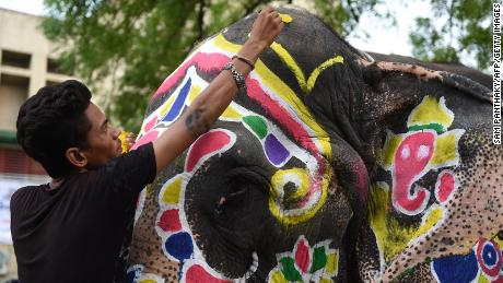 An Indian elephant is painted ahead of the annual Hindu festival Rath Yatra in Ahmedabad, Gujarat, on July 3, 2019.