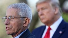 Can Trump fire Fauci? Technically, no