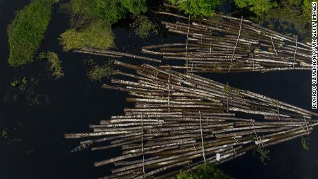 An aerial view of some of 900 logs from illegal cutting that were seized by the Amazon Military Police in Amazonas State, Brazil.