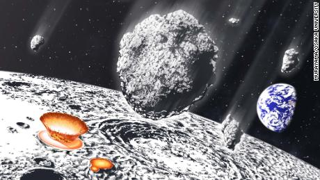 Earth, moon were bombarded by asteroid shower 800 million years ago