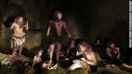Have a low pain threshold? You might be part Neanderthal
