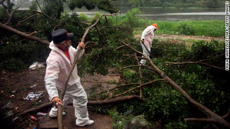 Fire and rescue workers cut the branches of a tree that fell under  heavy rain caused by Isaias in Santo Domingo, Dominican Republic, on Thursday.