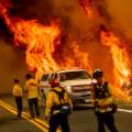 01 wildfires 0823