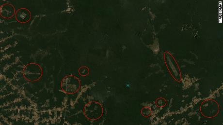Satellite view of forests in southern Amazonas state in July 2020, showing cleared tracts annotated in red by MapBiomas.
