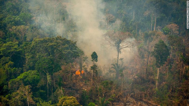 Tens of thousands of fires are pushing the Amazon to a tipping point