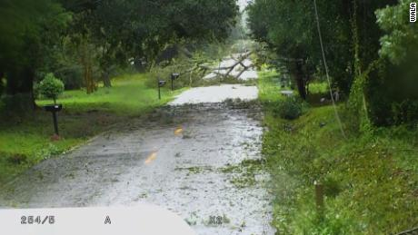 A road is littered with debris Wednesday morning in the Mobile area.
