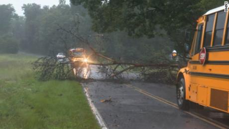 A downed tree blocks a school bus and other traffic in Anderson County, South Carolina, following  rains on Thursday morning.