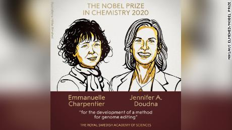 Doudna and Charpentier are the first two women to jointly win the chemistry prize.