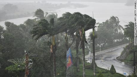 Strong winds batter coconut trees in central Vietnam on Wednesday.