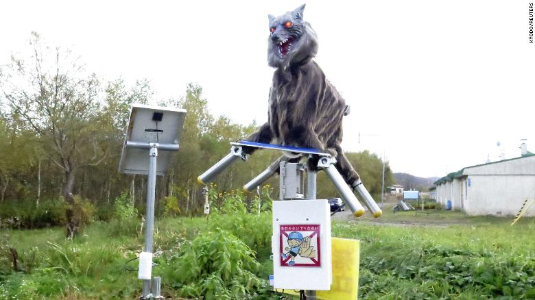 Japanese town deploys 'Monster Wolf' robots to deter wild bears