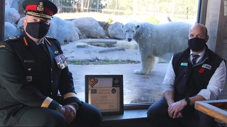 Toronto Zoo polar bear promoted to 'honorary master corporal' by the Canadian Army