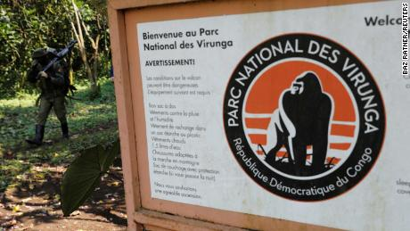 Six Virunga park rangers killed in eastern Congo ambush